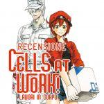 Cells at works